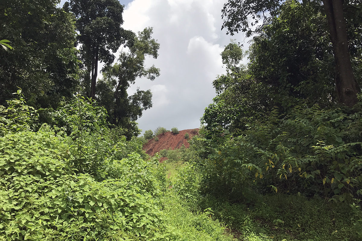 A mound of overburden material generated after extracting iron ore. This waste material gets washed away as a run-off into paddy fields and chokes them. Photo by Supriya Vohra.