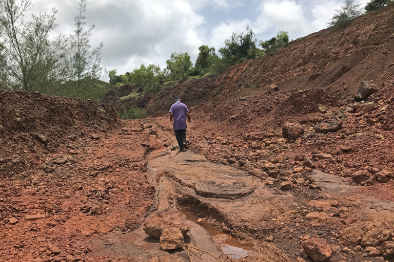 Sakaram Pednekar, a local farmer and activist, walking on what was once agricultural land. Photo by Supriya Vohra.